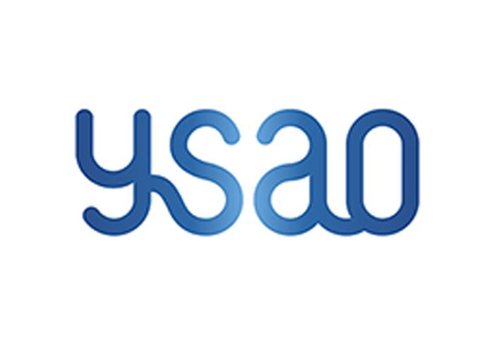 YSAO_logopieni-ENG
